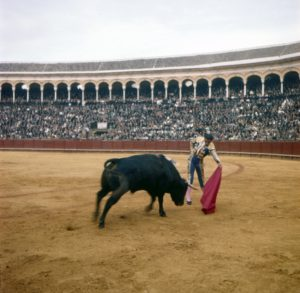 EH-C724T, 30 July 1959: Spanish matador Antonio Ordonez performing a pass in Sevilla, Spain. Copyright status: Unknown. Please credit, Ernest Hemingway Photo Collection. John F. Kennedy Presidential Library and Museum, Boston.
